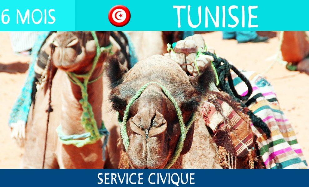 destination-tunisie
